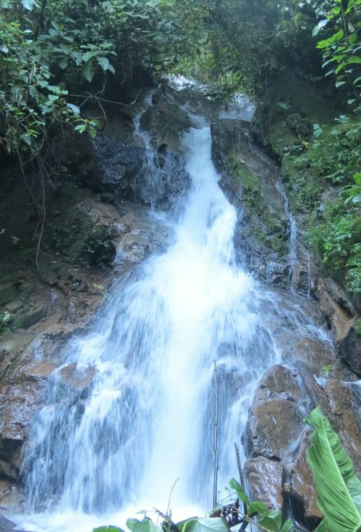 Cascada la Escondida Paquisha